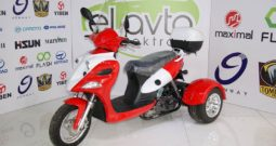 Tricycle ZH50-8