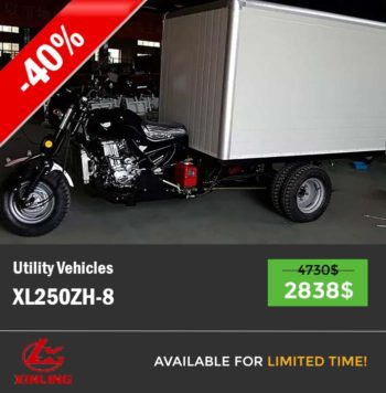Cargo tricycle XL250ZH-8